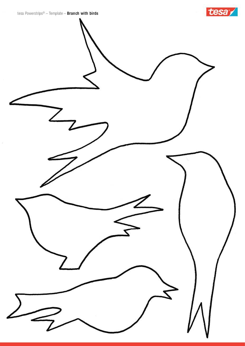 Druckvorlage Vogel Drucken Jpg 3 508 2 480