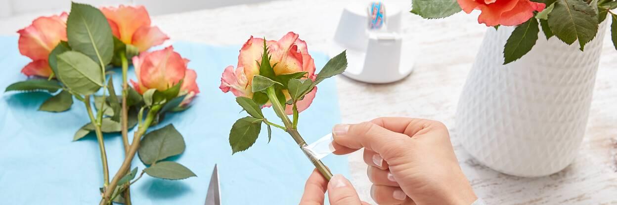 Oops, da ist es passiert: Man macht Rosen für die Vase fertig, passt einmal nicht auf – und schon ist ein Stiel abgeknickt! Kein Problem: Einfach zum tesafilm® greifen, ein Stück abreißen und die Stelle damit umwickeln, sodass sie geschient ist. Das funktioniert übrigens auch bei Sonnenblumen sehr gut!