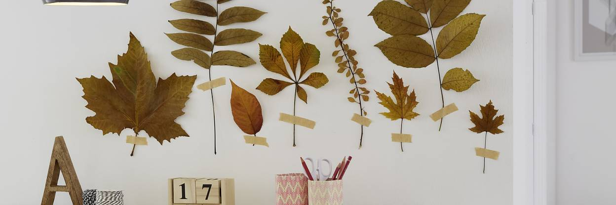 Stick leaves directly onto wall and create your own forest!