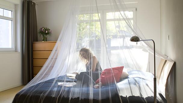 Letto Con Zanzariera : Camera da letto con zanzariera festa immagine stock immagine di