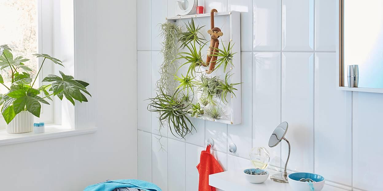 Giardini Verticali Fai Da Te giardino verticale fai da te - tesa