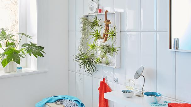 Create your own simple vertical garden!