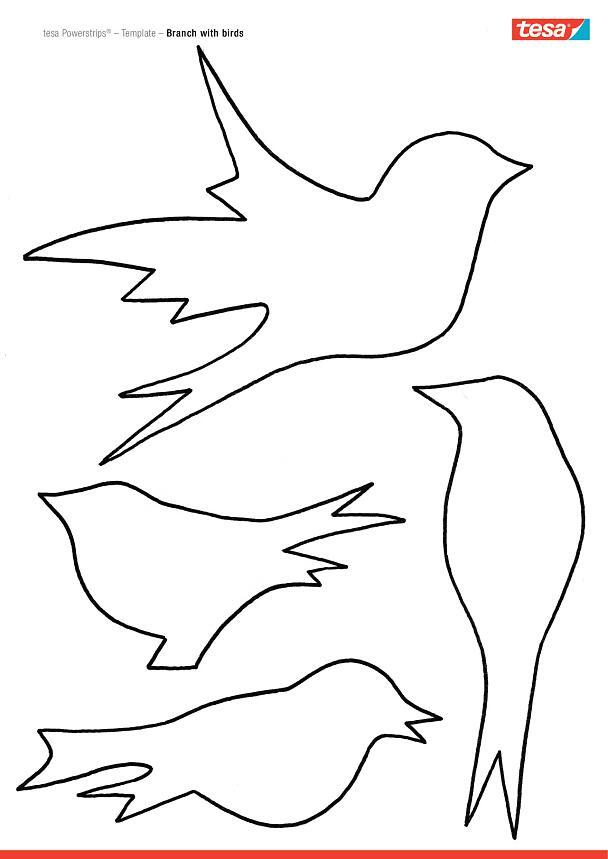 ptaszki na ga u0142 u0119zi